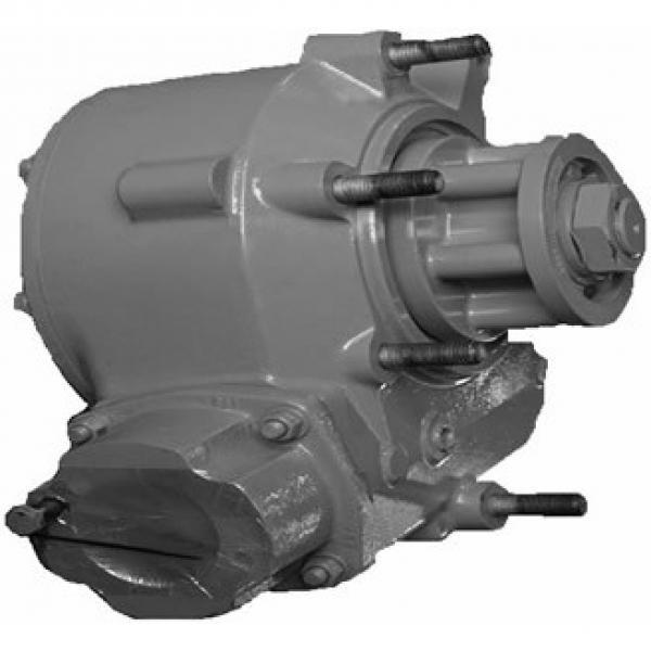Caterpillar 353-0646 Hydraulic Final Drive Motor #2 image